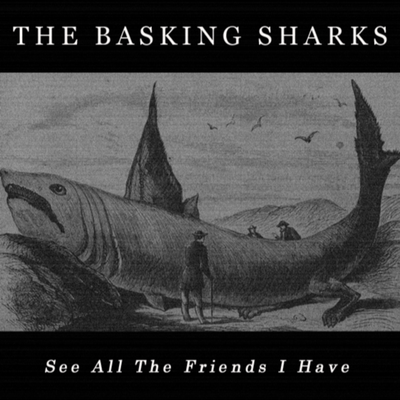 The Basking Sharks