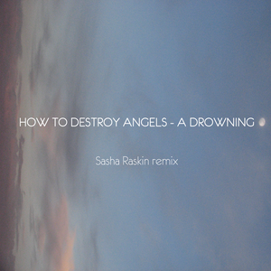 A Drowning - How To Destroy Angels [Sasha Raskin Remix]